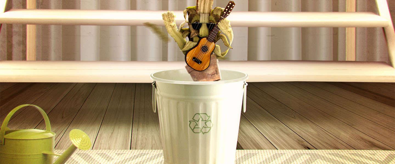 It's okay to throw a plant away