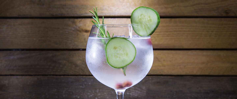 Dit zijn de verschillen in gin-tonic de afgelopen 10 jaar!