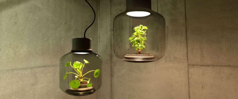 Deze 3 lampen zijn eyecatchers voor in huis