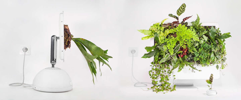 Mooie foto's: oude Macs als perfecte plantenbakken