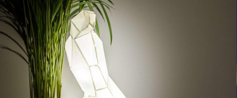 Deze papieren papegaai-lamp mag je zelf bouwen