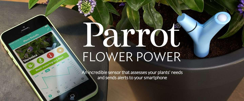 Parrot Flower Power : de wearable die de behoefte van je plant meet!
