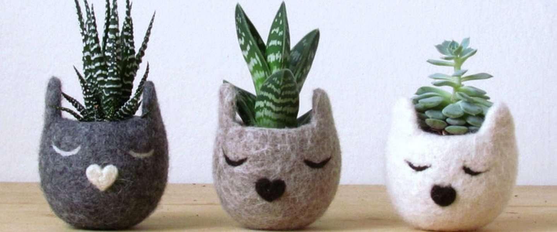 Schattige vilten potten maken van planten kleine dieren!