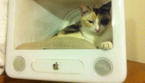 eMac krijgt tweede Leven