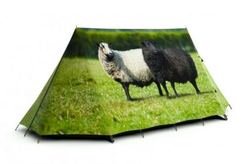 FieldCandy7