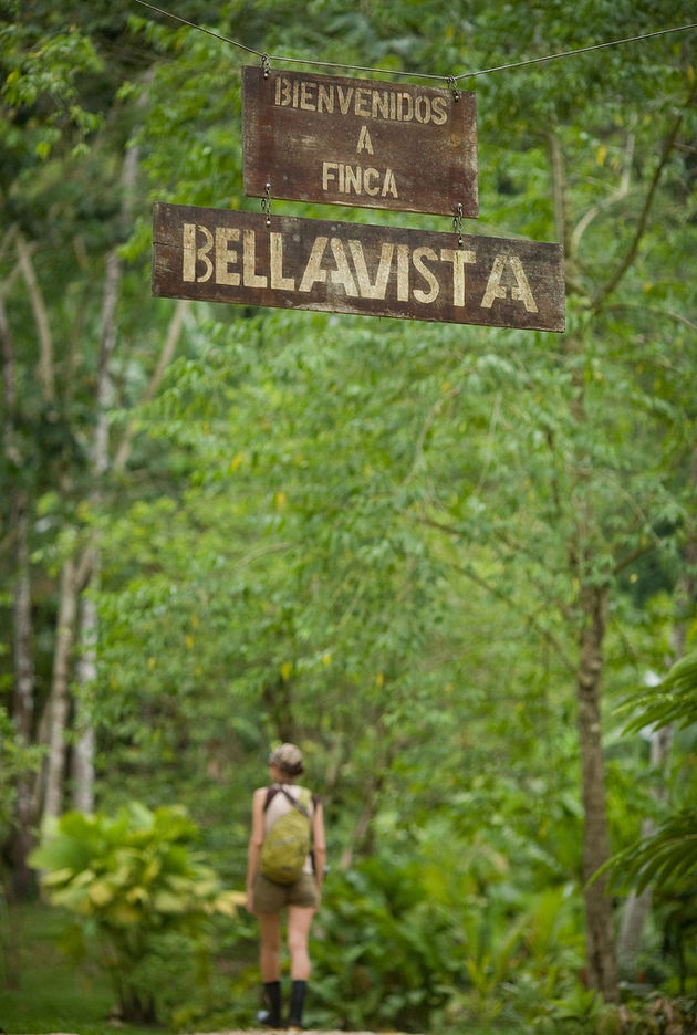 Finca-Bellavista-costa-rica-9