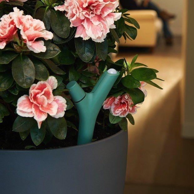 flower-power-wearable-voor-planten