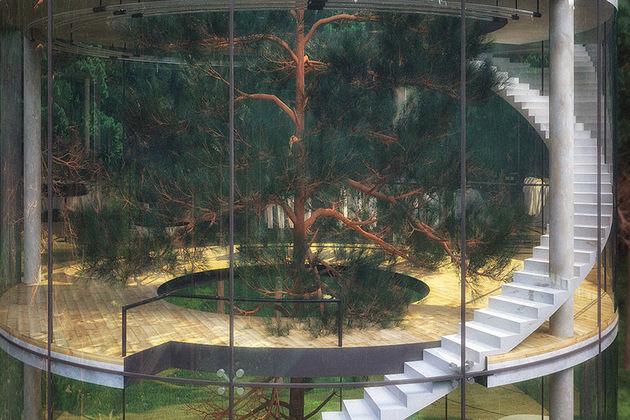 Glazen-huis-om-boom-2
