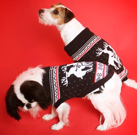 Honden-kerst-dekje-2
