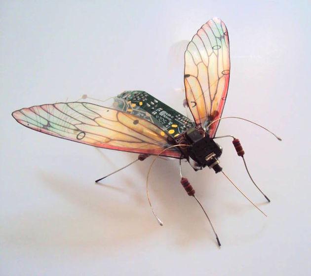 julie alice chappell vlieg
