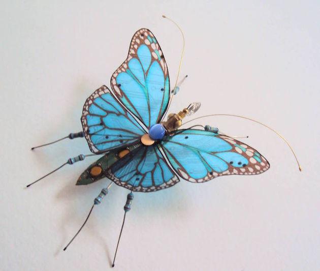 julie alice chappell vlinder blauw