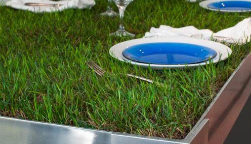 Picknicktafel met Gras