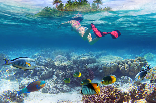 snorkelen-bora-bora