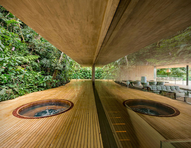 the-rainforest-house-17