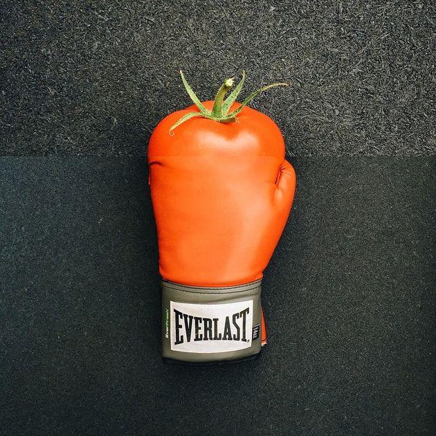 tomaat-boks