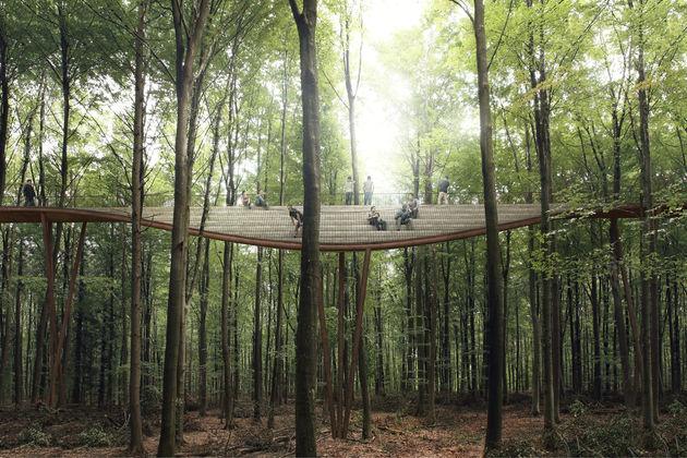 treetop-denemarken