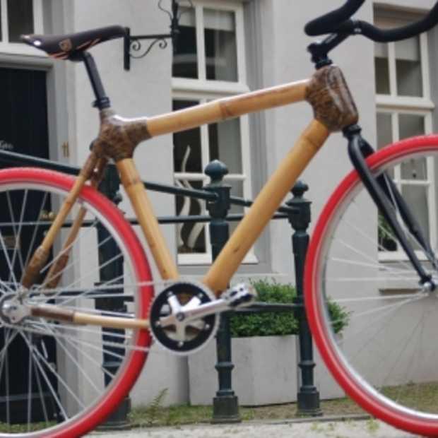 Foresta Bikes: Bikes van bamboe