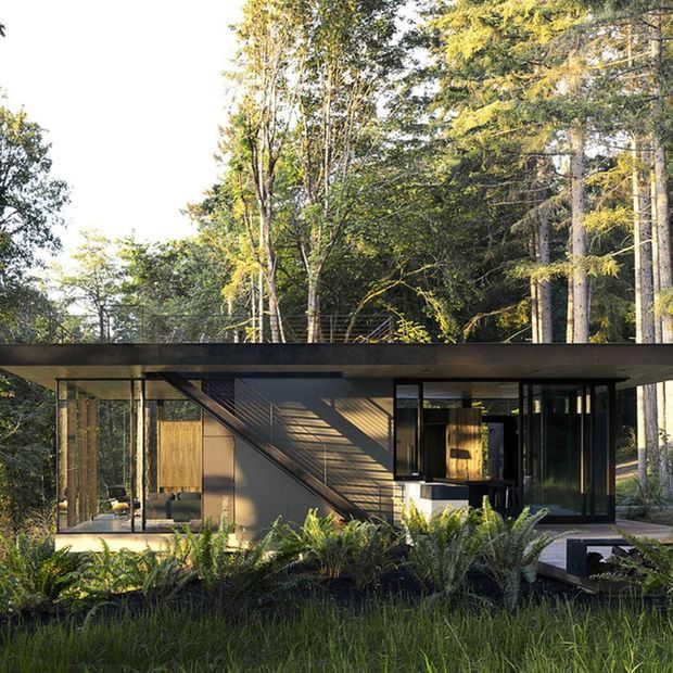 Prachtig wonen in de bossen van  Washington