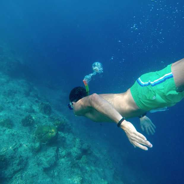 Hier wil je snorkelen: de 8 mooiste snorkel spots ter wereld