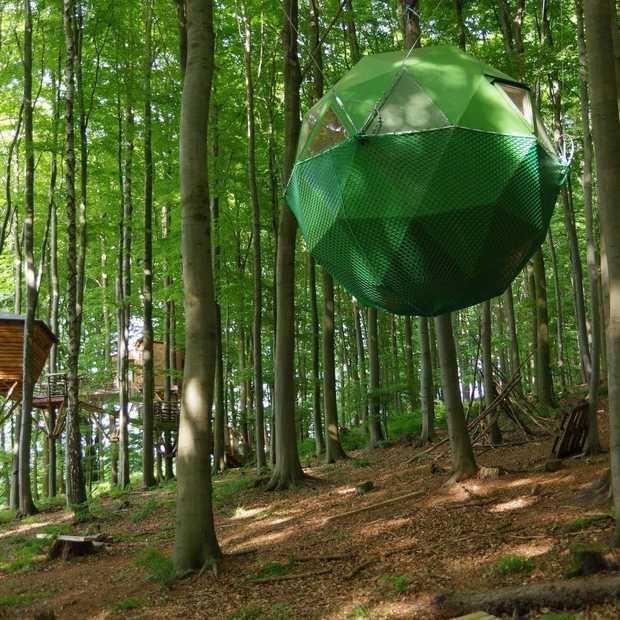 In Baumhotel Robins Nest wil jij een keer slapen!