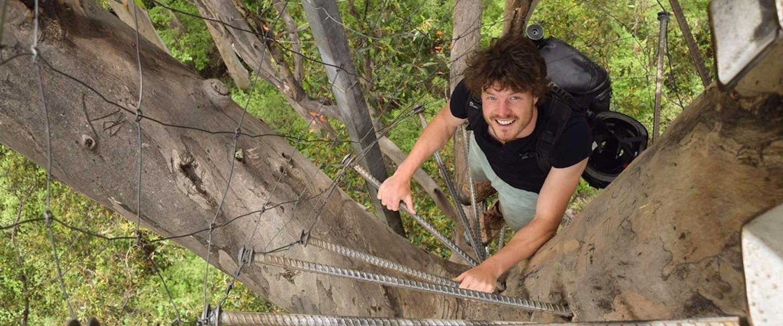 360 graden video: deze man klimt in een boom van 75 meter zonder touw