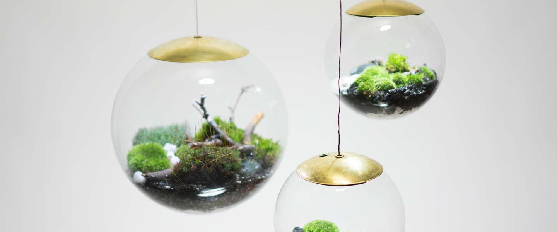 De Globe: een lamp met een plantenbak? Of plantenbak met een lamp?