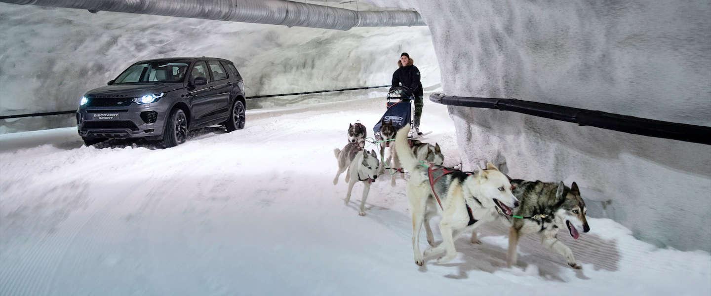 Land Rover doet weer eens van zich spreken, Discovery Sport vs een team Husky's