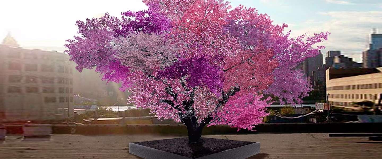 Aan deze boom groeien 40 verschillende soorten fruit