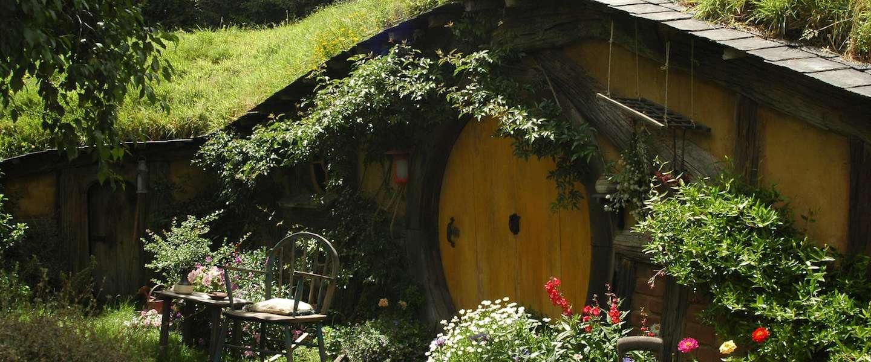 Dit zijn dé musthaves voor je tuin deze zomer