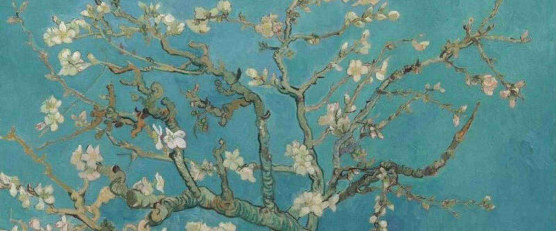 Van Gogh Museum in verkiezing uitgeroepen tot beste museum