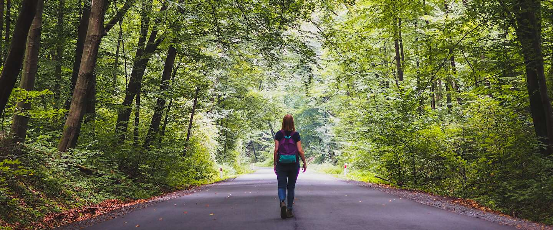 Wandelen is inmiddels een populaire hobby: 5 tips voor een geslaagde wandeling