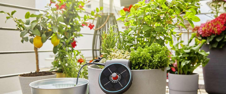 Geef de planten op je balkon water met zonlicht