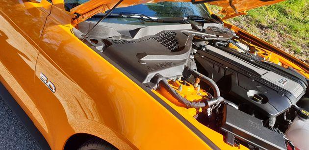 Ford-Mustang_5_liter_V8_05