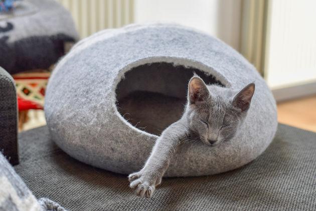 cocon-kattenmandje
