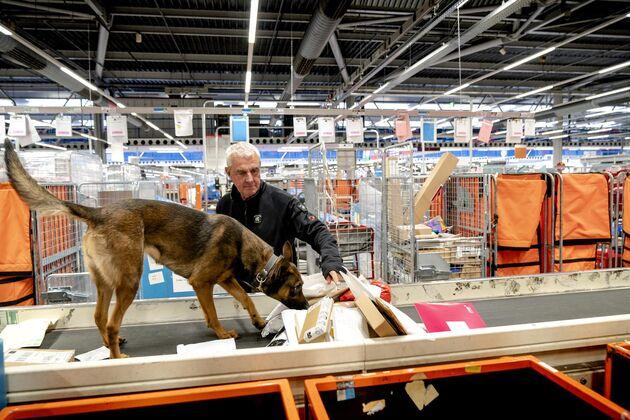 Douanier en hond controleren brieven en pakketten