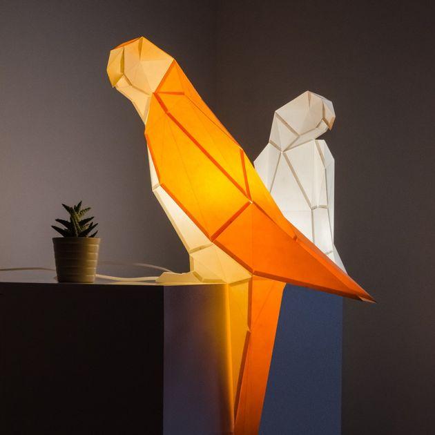 parrot-4