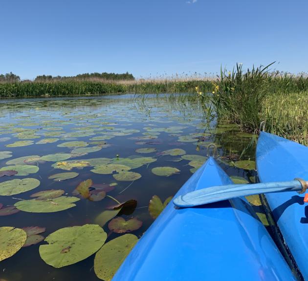 Kano huren Nieuwkoopse plassen