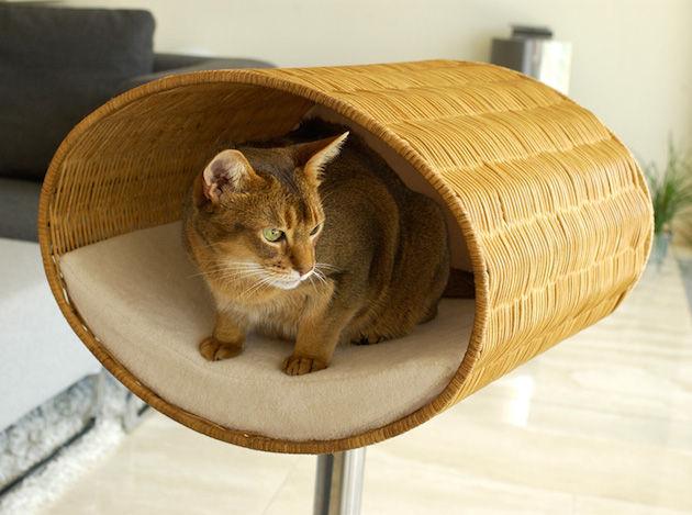 kattenmandjes-moderne-huizen-4