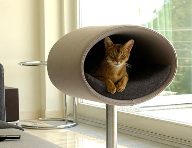 kattenmandjes-moderne-huizen-5