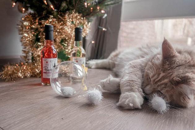 Kerstbal-voor-katten