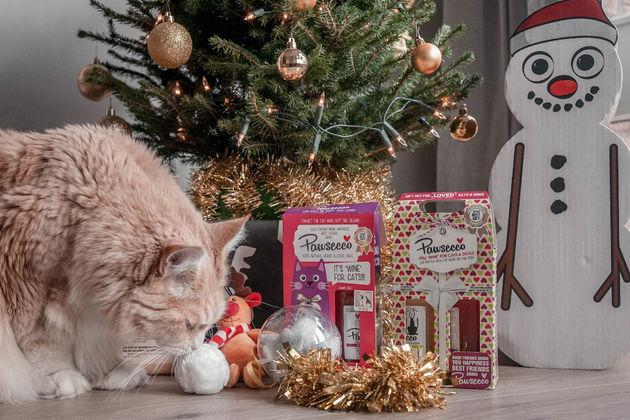 Kerstcadeau-voor-je-kat-poezenbazen