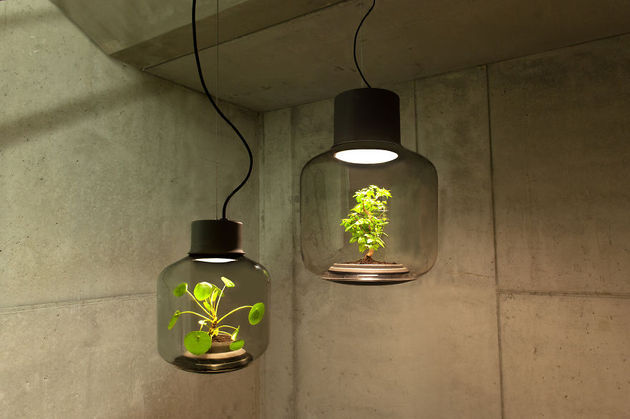 lamp-met-plant