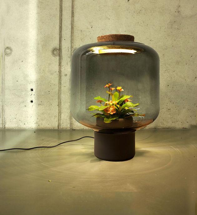 lampen-met-planten