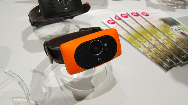 Motorola-Scout-5000-huisdieren-gadgets