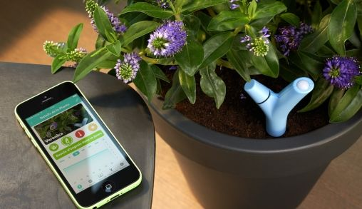 Parrot Flower Power verbindt je planten met je smartphone
