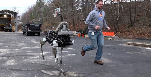 Robothond Spot