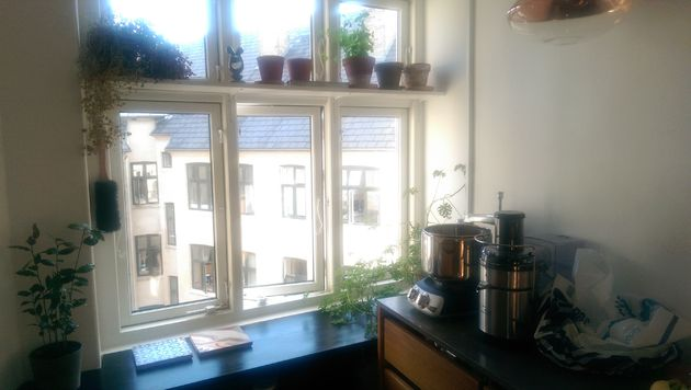 Sfeer-in-de-keuken-kruidentuintje