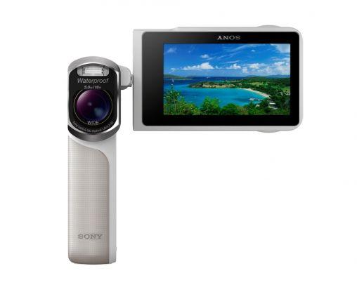 Sony Handycam GW55 front