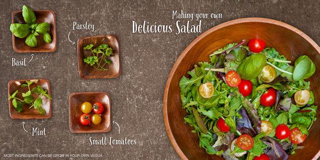 Vegua-salade