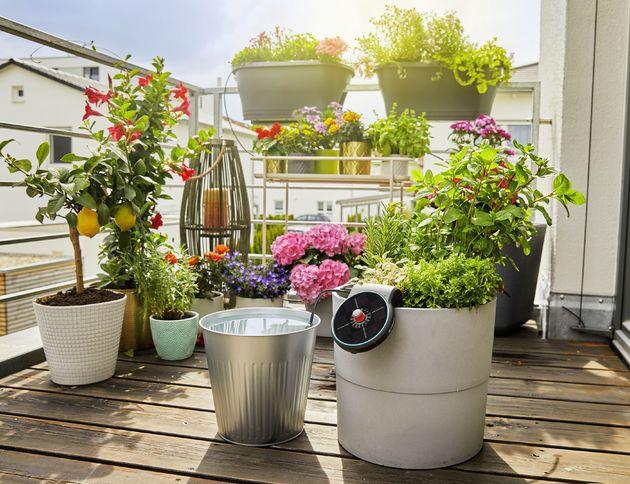 Zonne-energie planten water geven